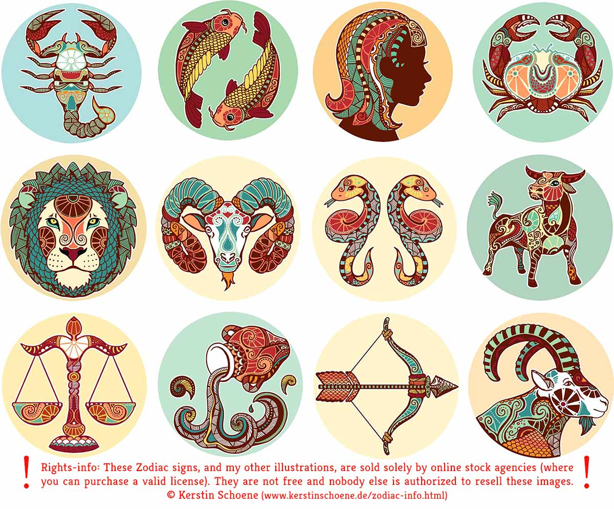 zodiac, signs, vector